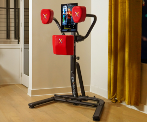 Interactive Boxing Trainer