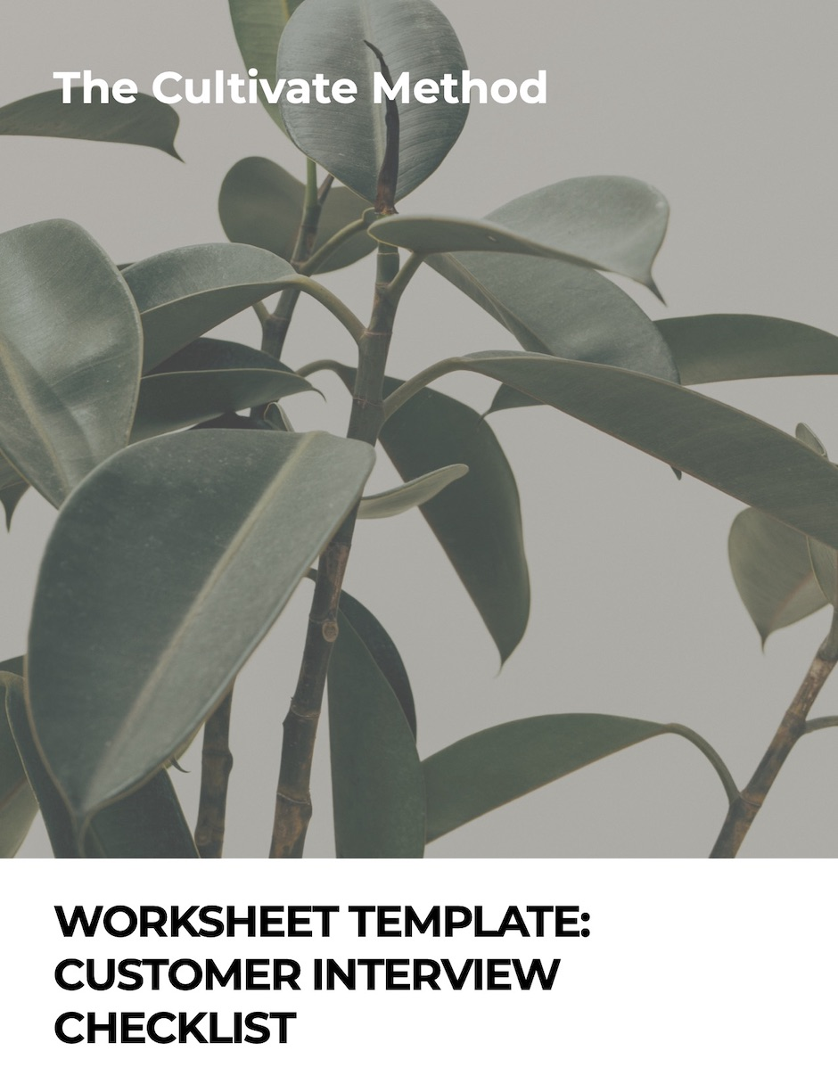 Cover image for Worksheet Template: Customer Interview Checklist