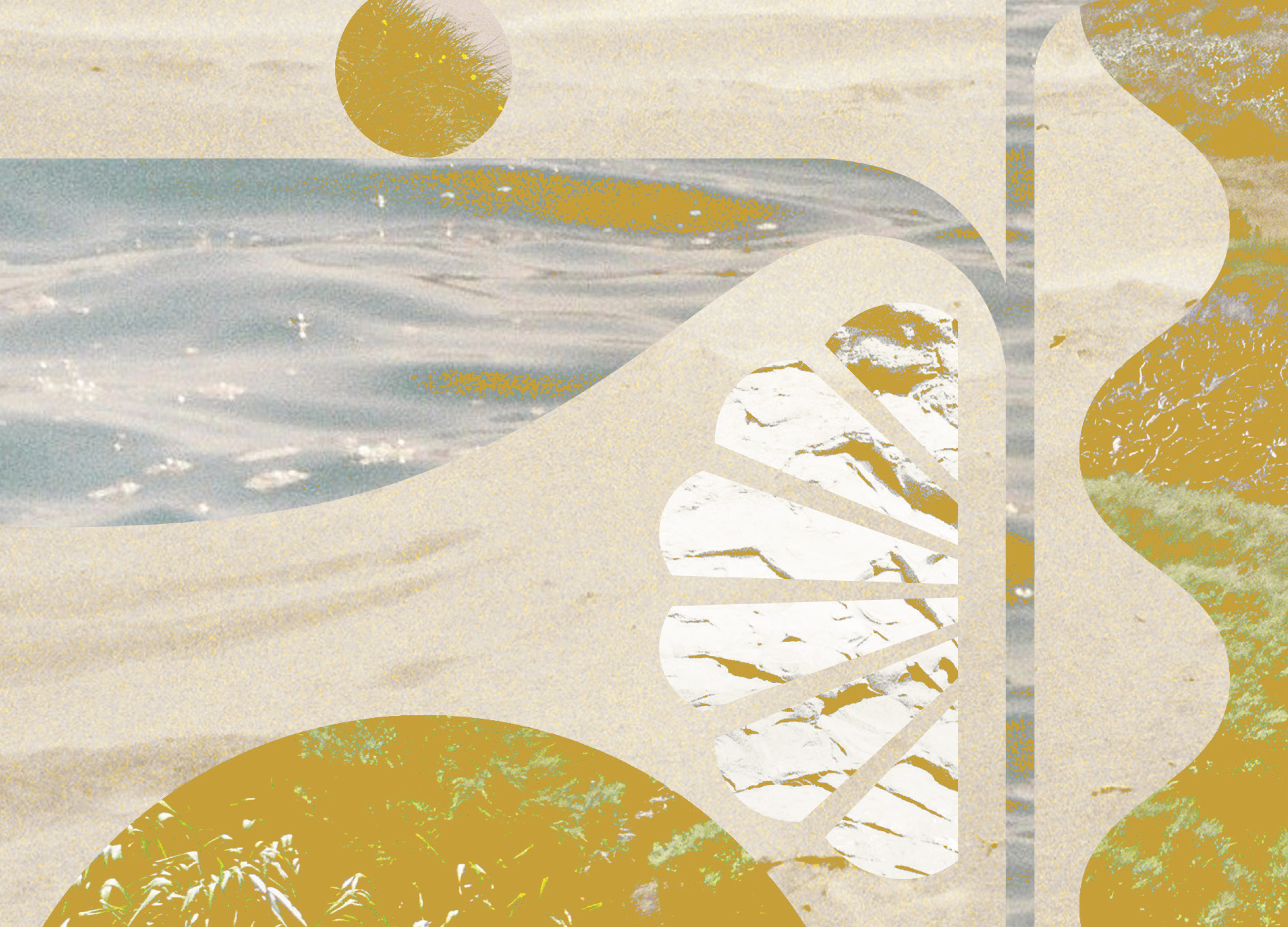 Golden Bay can artwork for Northern Exposure