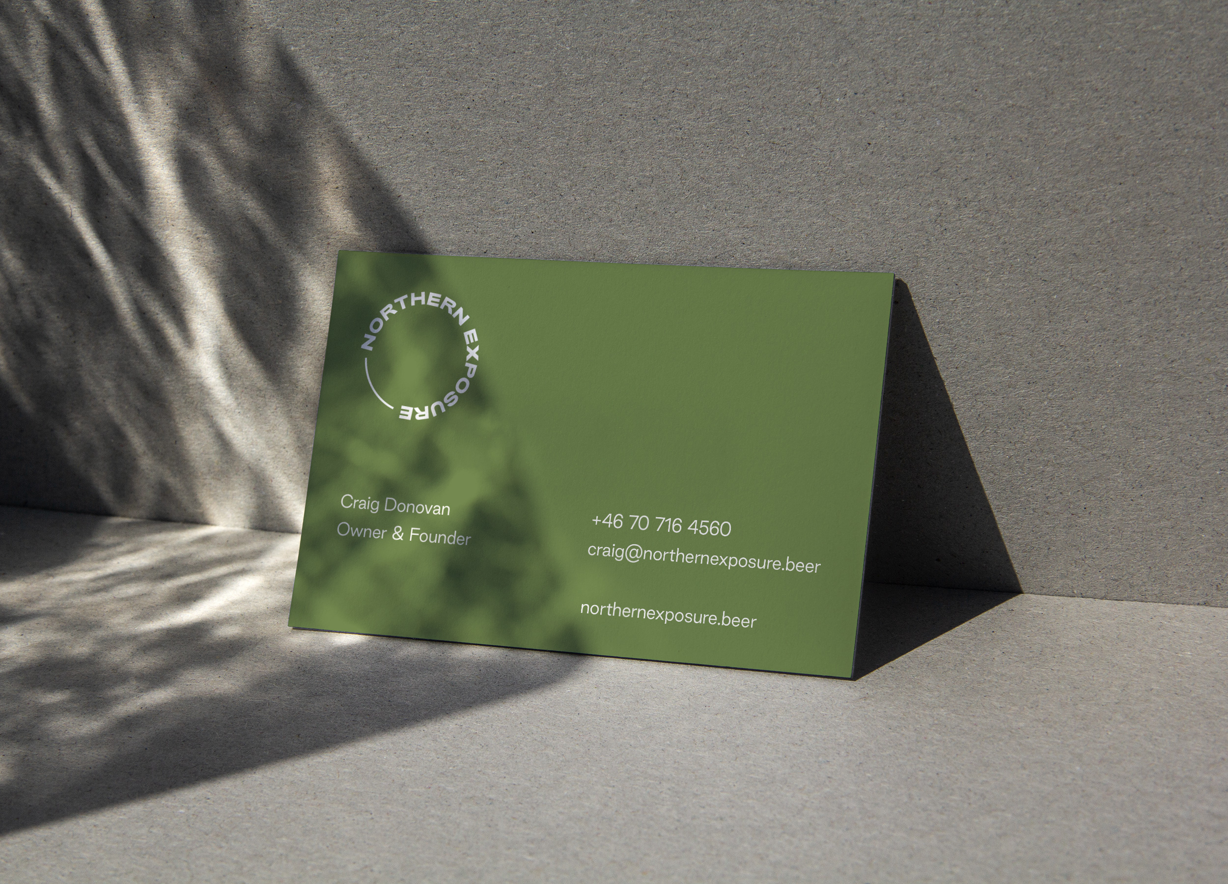 Northern Exposure Business Card Design
