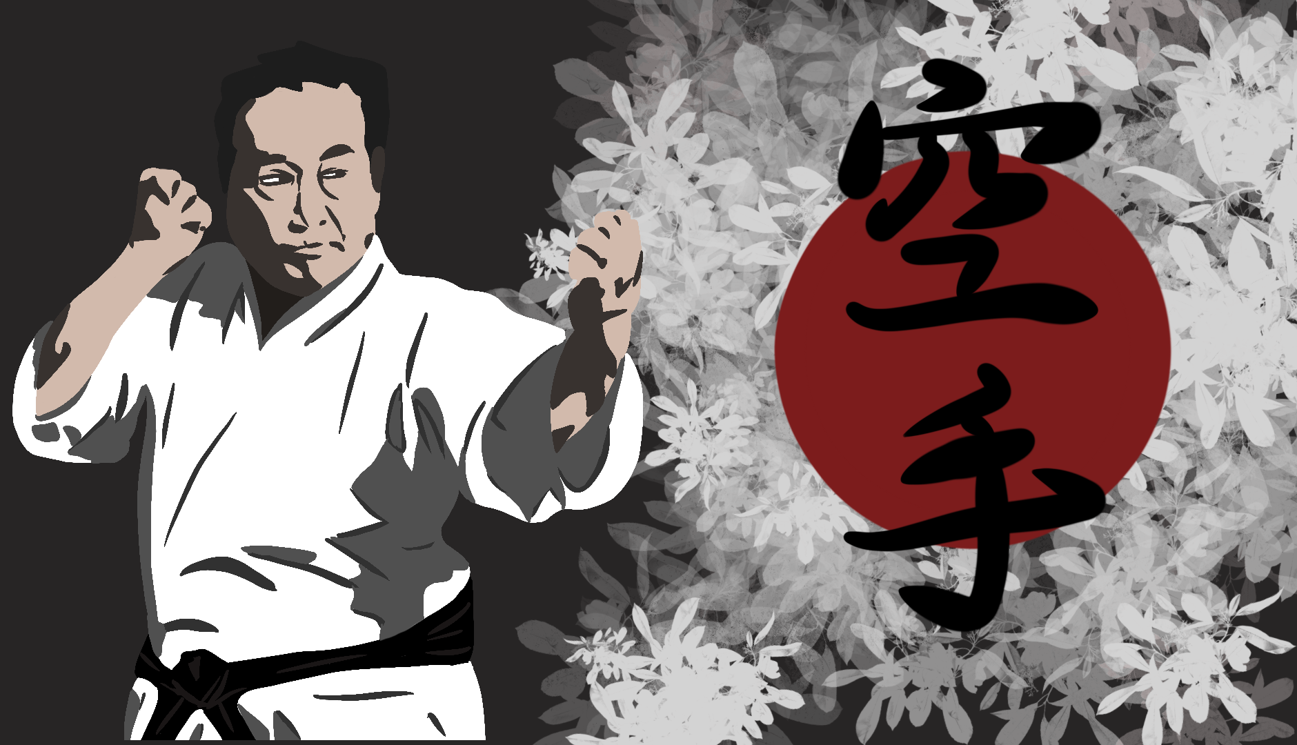 National Karate Kobudo Federation Karate Programs. Learn Karate Styles online and test for certification.