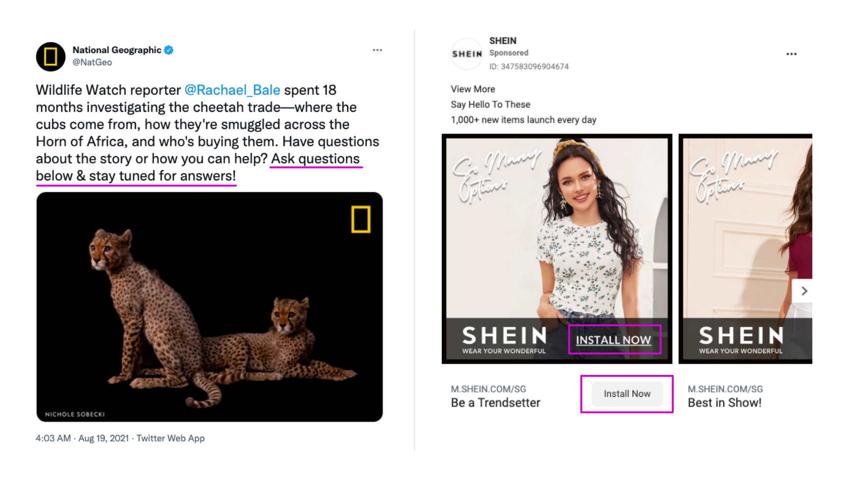 Examples of CTAs used by National Geographic and SHEIN.