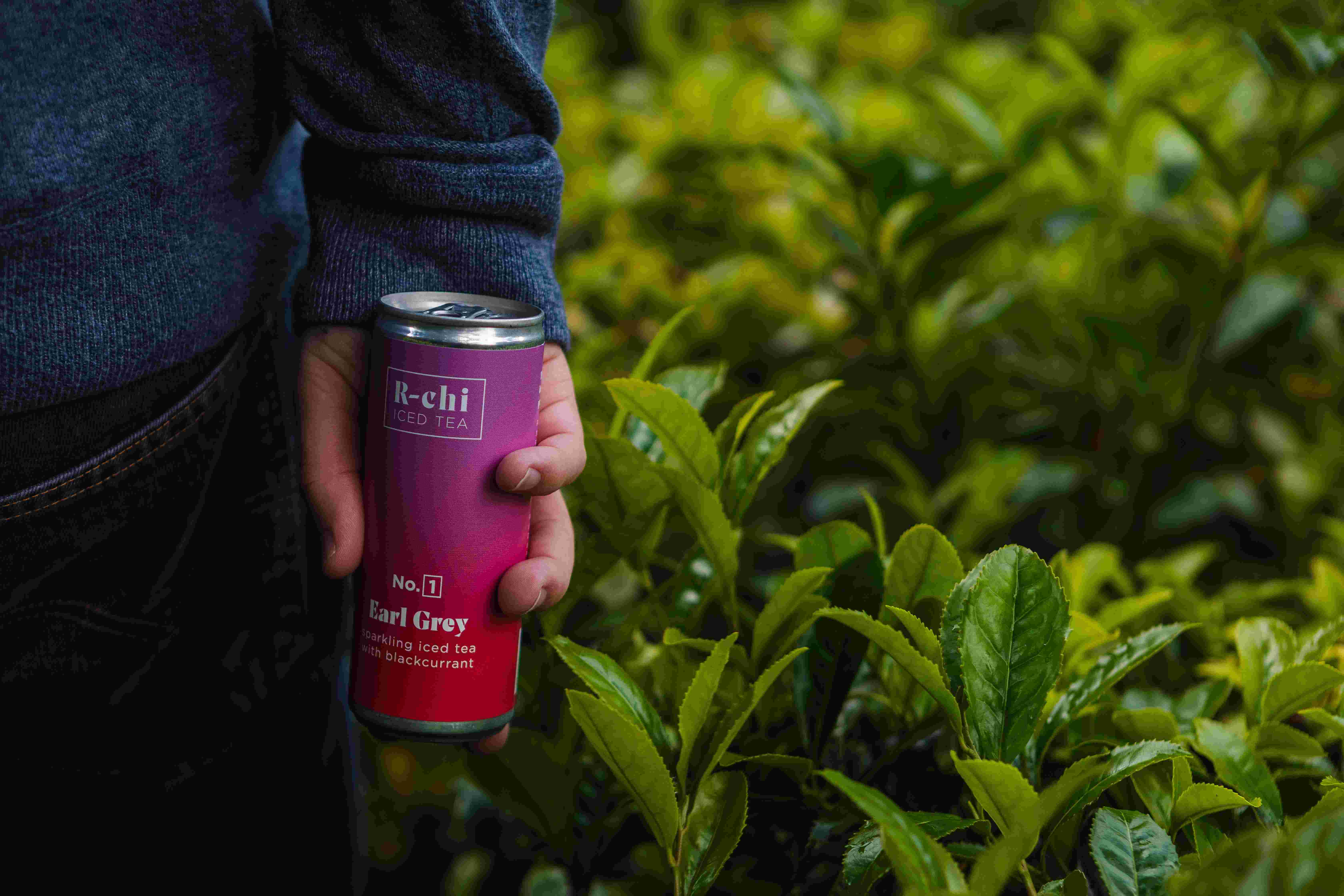 Archie Boscawen amongst a field of tea camelia trees shrubs with blue jumper. Holding a pink and red can of R chi iced tea.