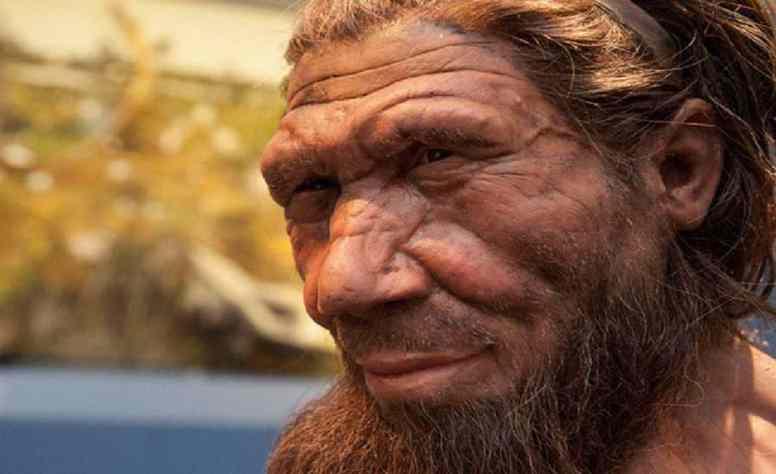 Esta nova raça, a Raça de Neandertal, considerada como uma raça lutadora e referindo ao tempo, (800 mil anos atrás), constituiu-se num povo de longas viagens, espalhando-se pela Ásia, África e...
