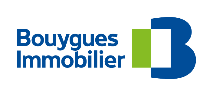 Bouygues Immobilier Logo Blue