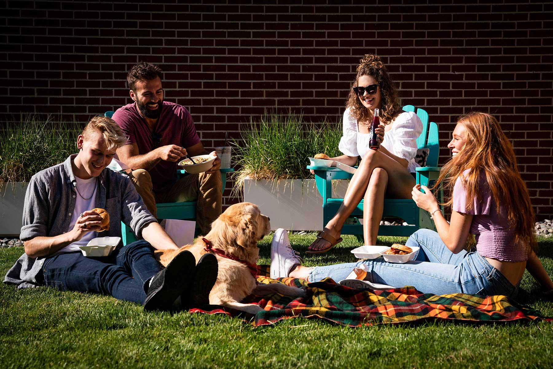 People having a picnic