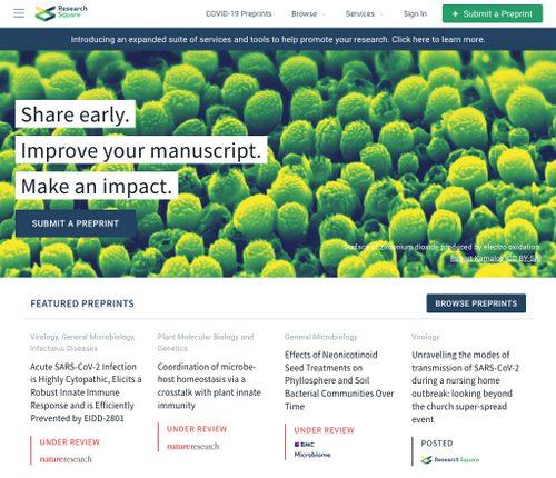 Screenshot of the RSC preprint platform