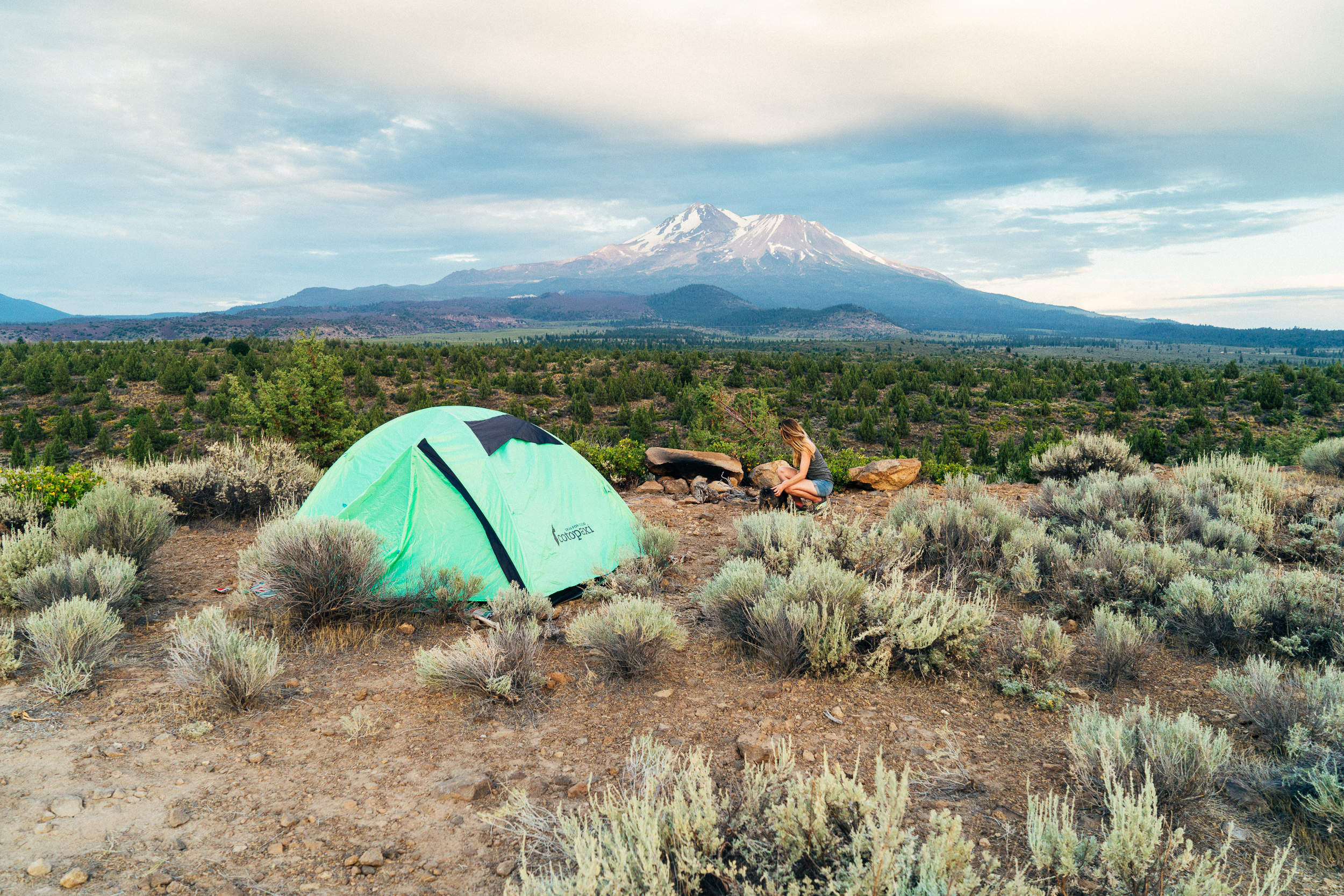 A photo of me, Juliana, petting my dog Roscoe. There's lots of fragrant silver sage brush surrounding us. Our teal tent is set up near us, with Mount Shasta in the background.