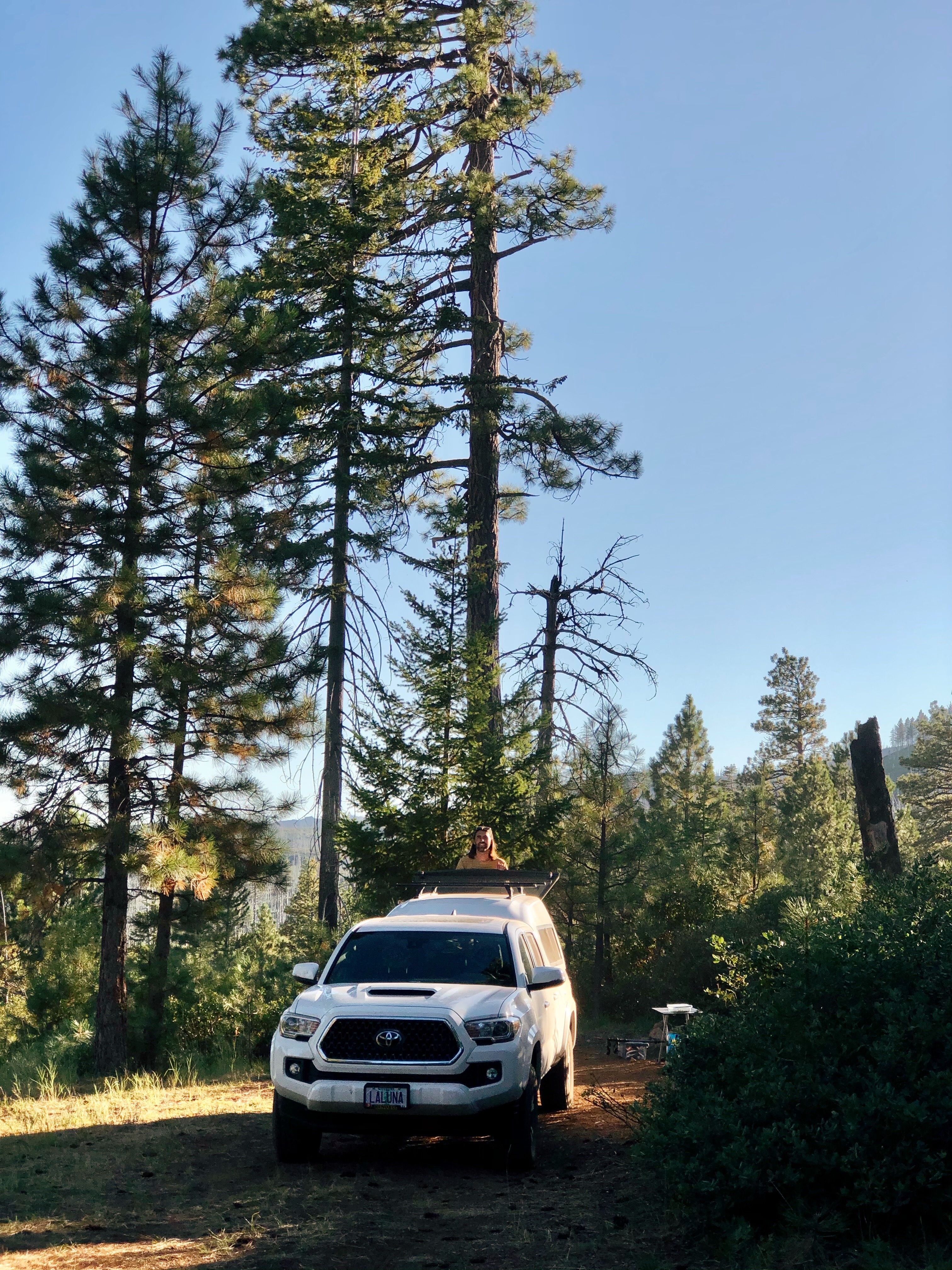 A photo of our white Toyota Tacoma, named Luna, in the woods