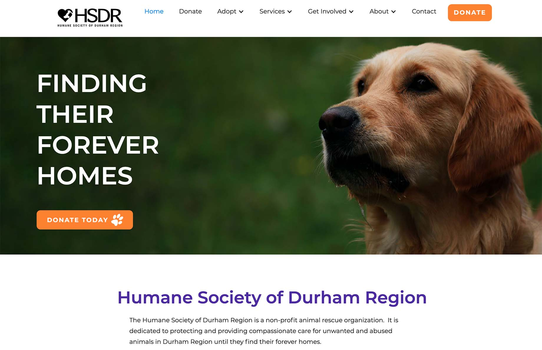 Picture of HSDR website.