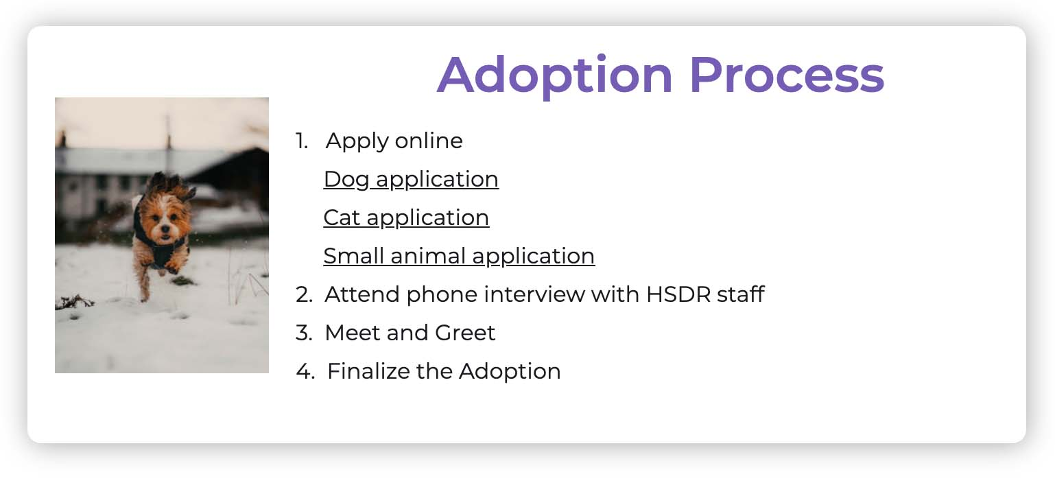 HSDR website sample page showing adoption process.