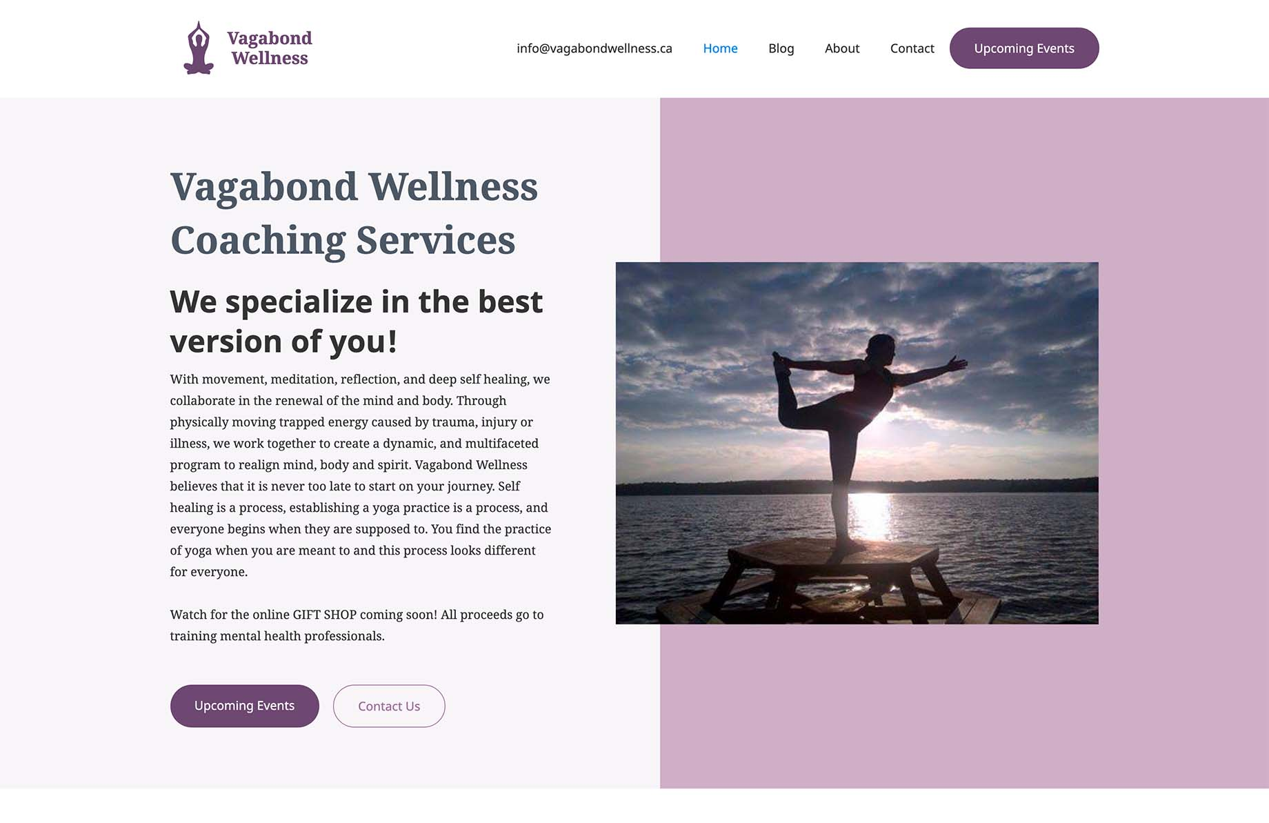 Picture of Vagabond Wellness website home page.