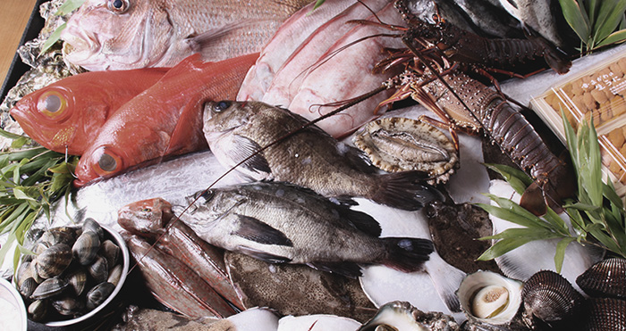 Attention Seafood Importers | New SIMP Regulations Effective January 2019