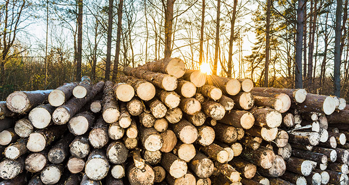 US Softwood Lumber Assessment Fee Increasing on April 1st, 2021