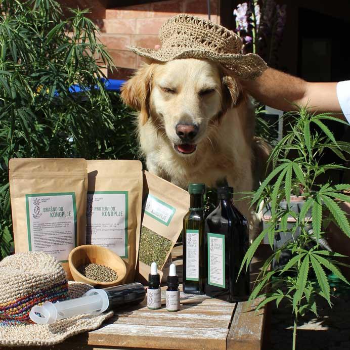 integrity hemp proizvodi i pas