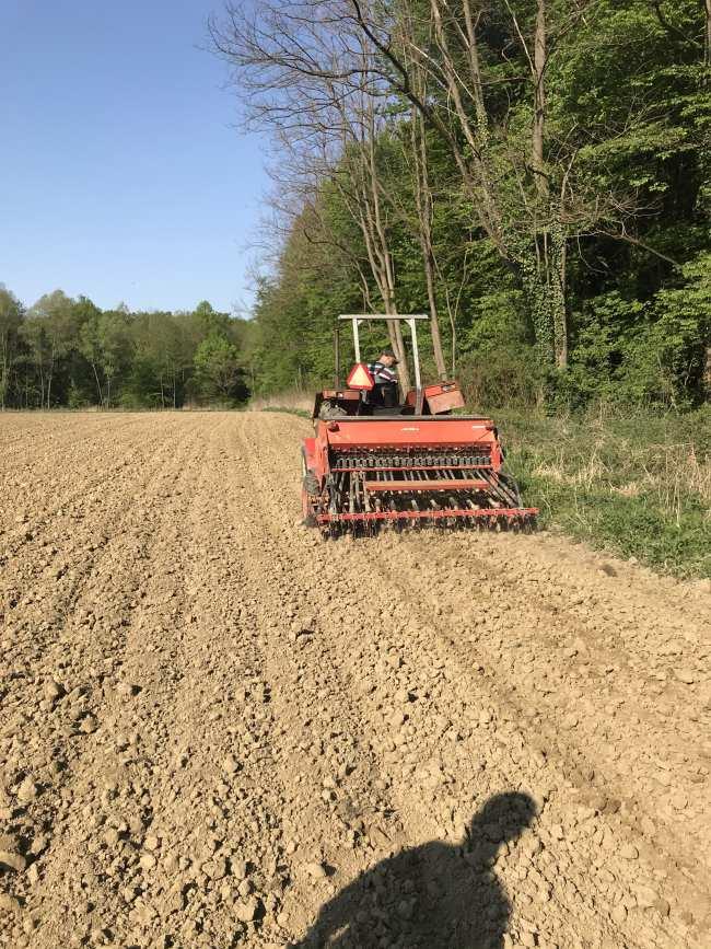 obrada polja integrity hemp industrijske konoplje