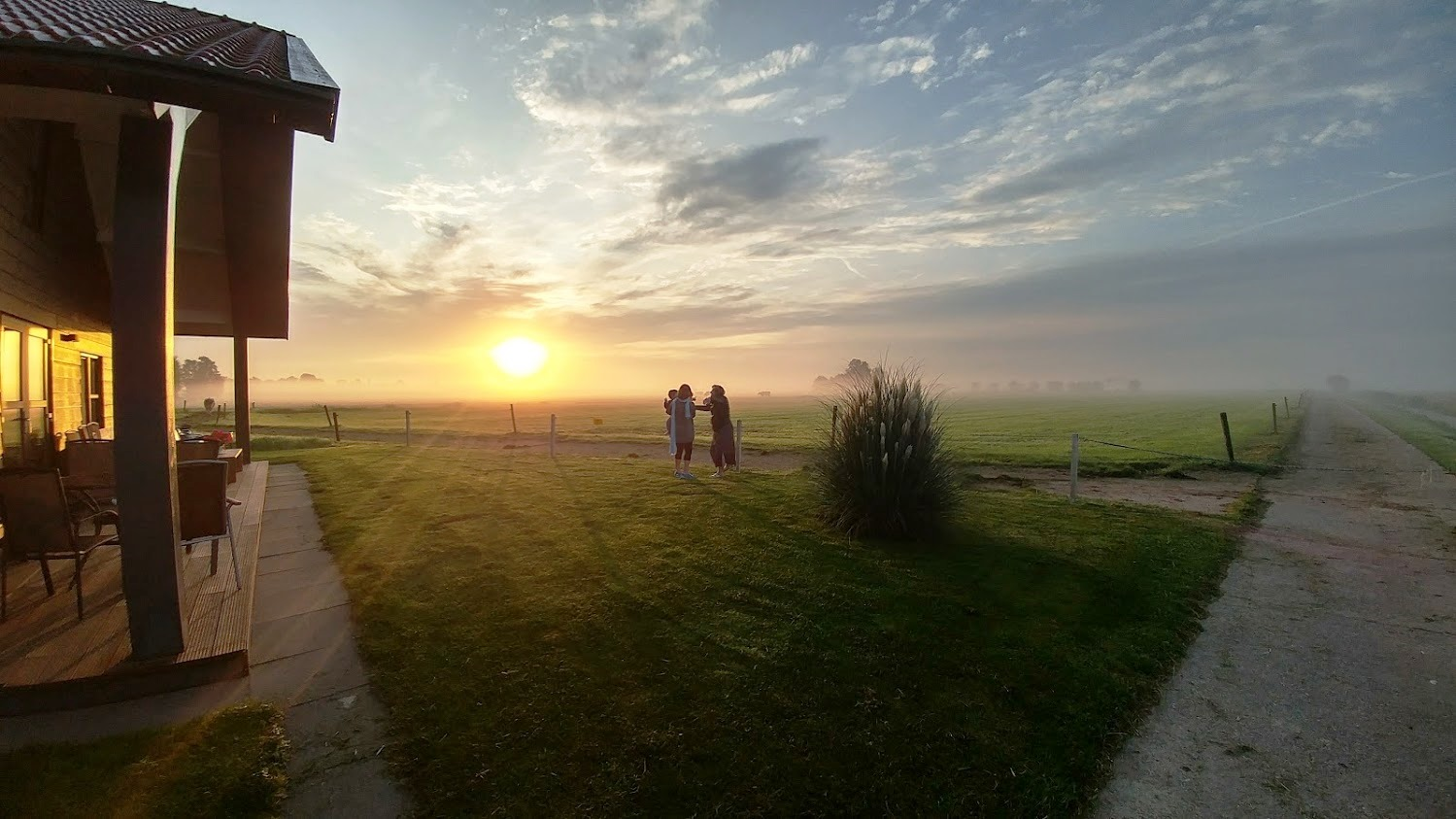 השדה הירוק בחזית הצימר בחווה בהולנד
