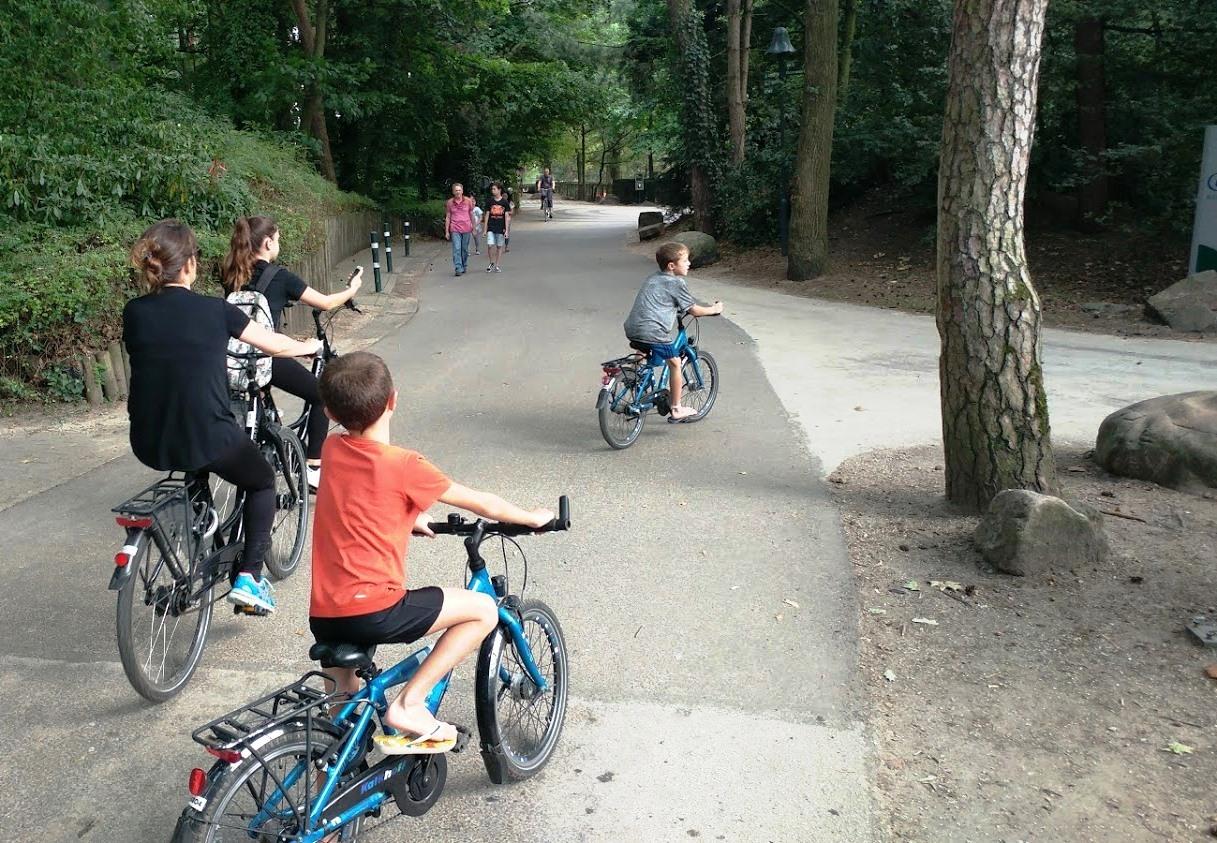 רכיבה על אופניים בכפר הנופש