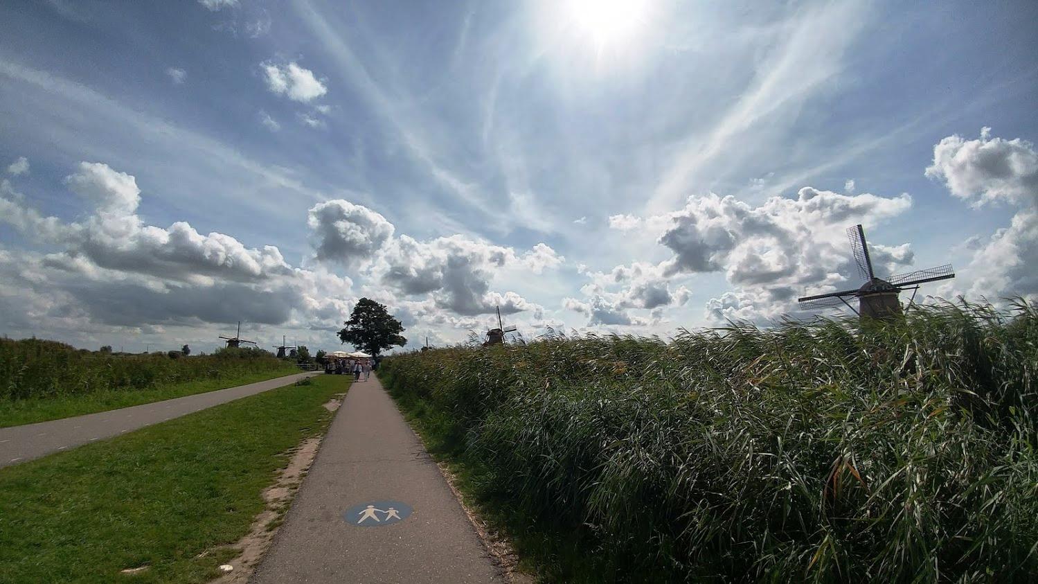 שביל אופניים בפארק תחנות הרוח בהולנד
