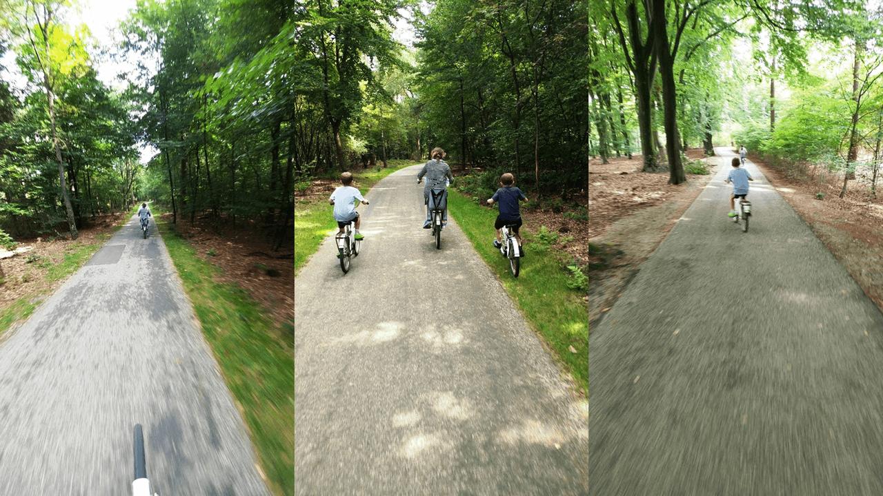 רכיבה על האופניים הלבנים בתחומי השמורה