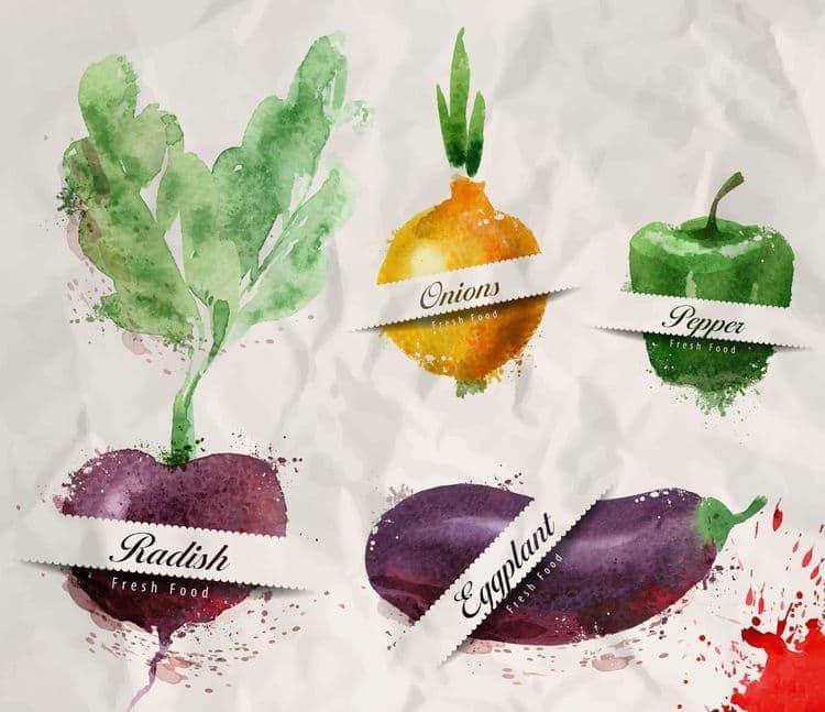 Fresh food radish onions bell pepper eggplant