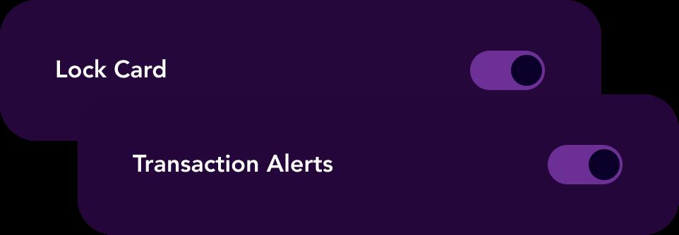 Astro alert controls