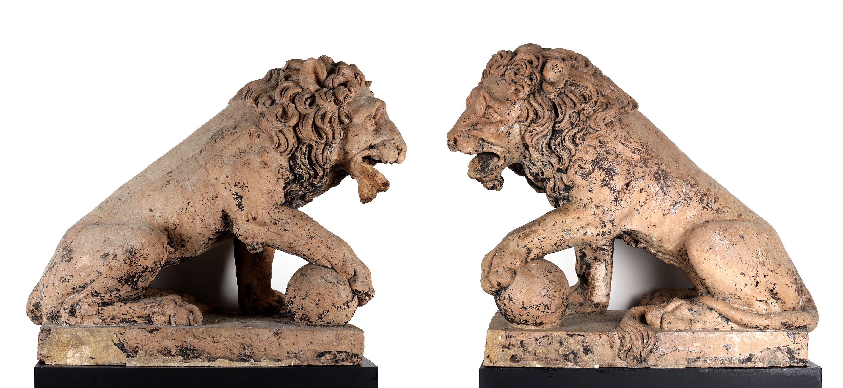Two Lions in terracotta
