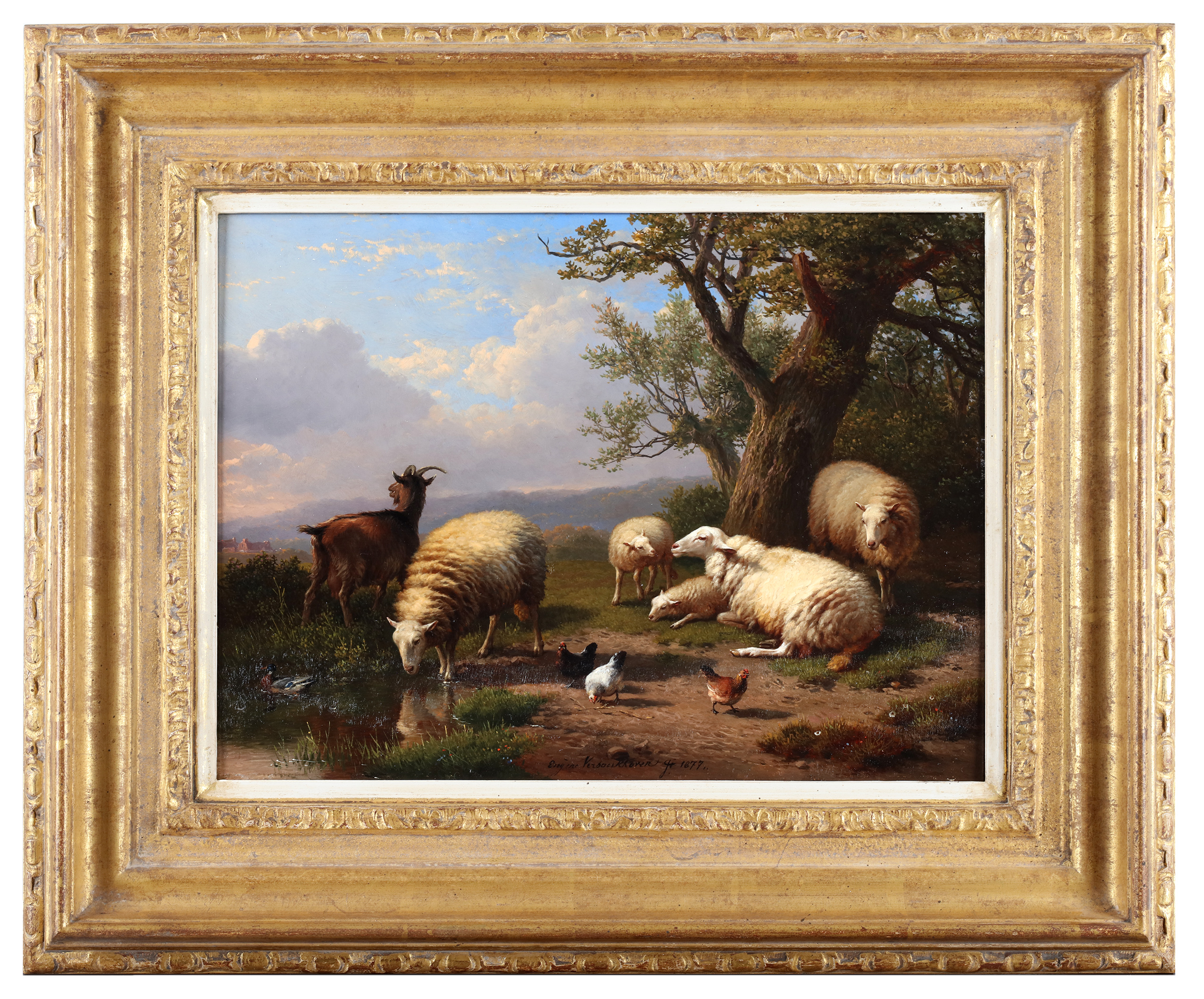 A gathering of farm animals