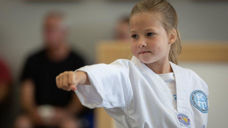 North Olathe Martial Arts