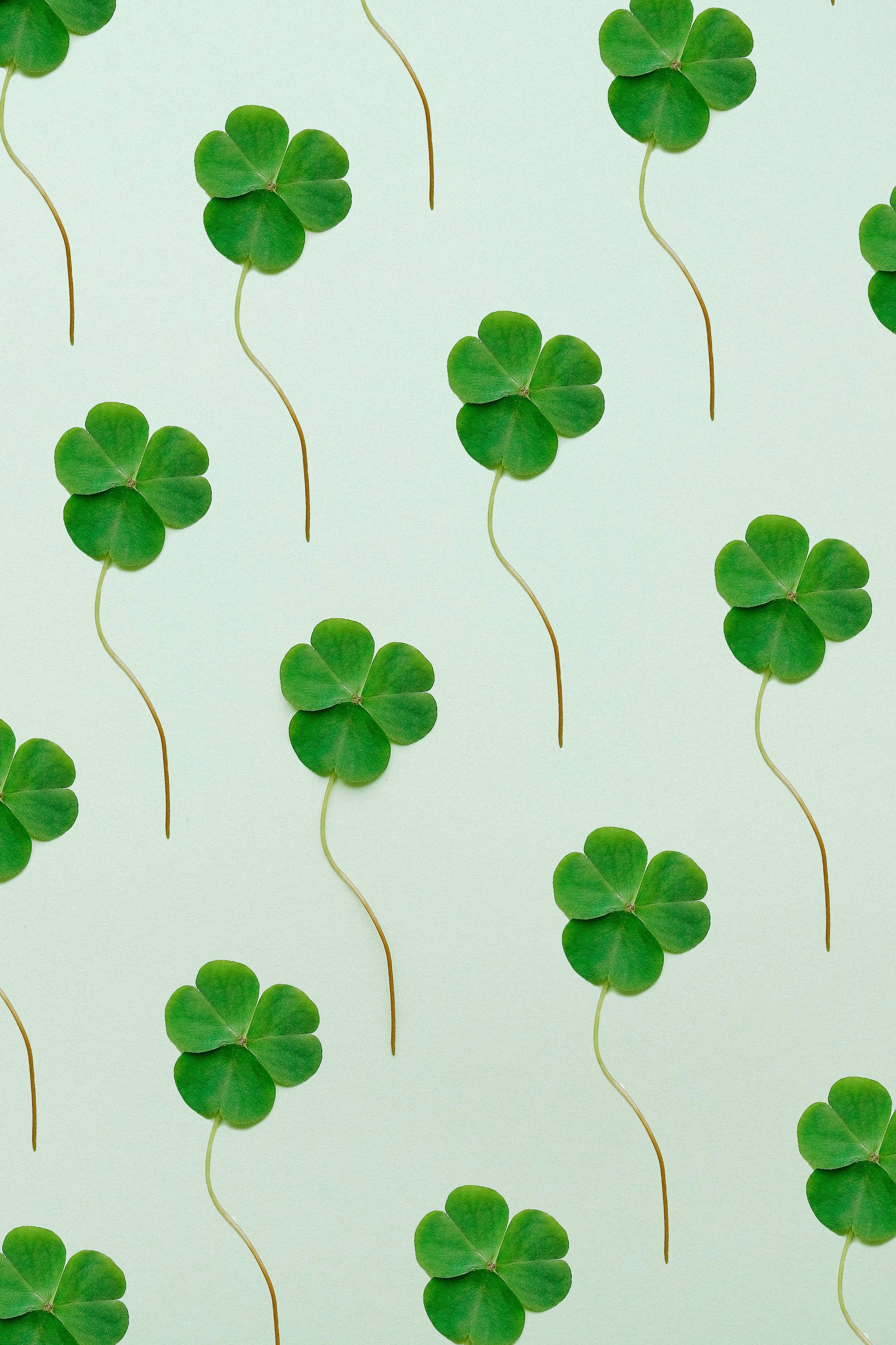 5 of the Best Ways to Celebrate St Patrick's Day in the Office