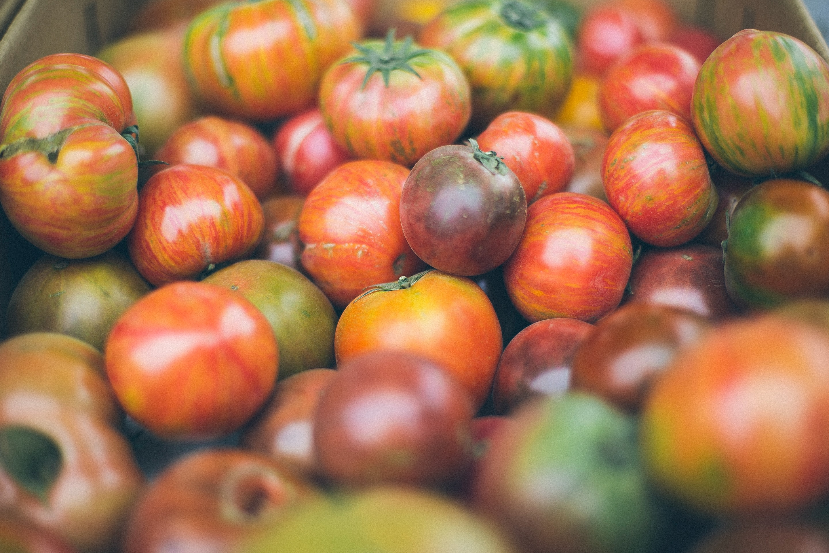 A bunch of multi-color heirloom tomatoes