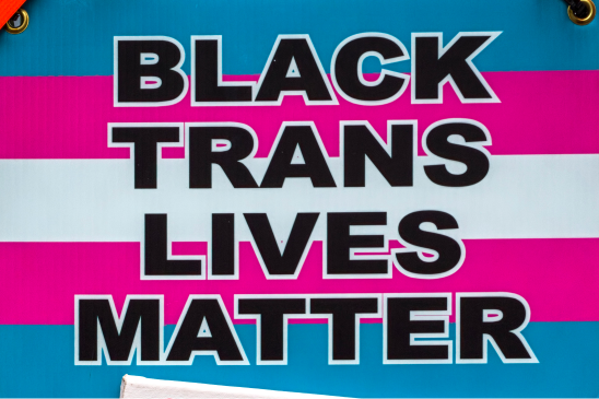 """A poster with the transgender flag with pink, white, and blue stripes that reads """"Black Trans Lives Matter"""" in black text"""