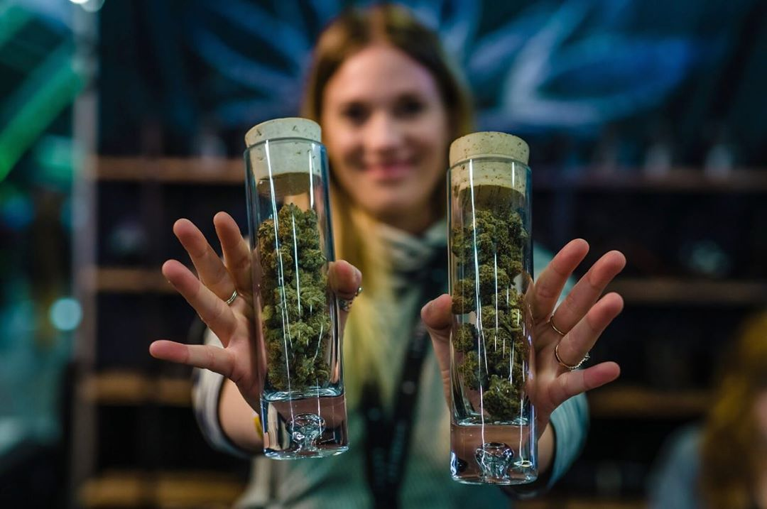women bud-tending in a shop with two test tubes full of cannabis nuggets