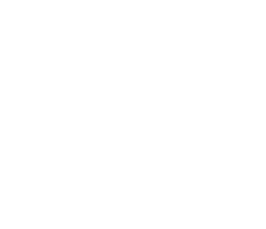 Jingltree natural real Nordmann Fir Christmas Trees with free delivery and collection with recycling.