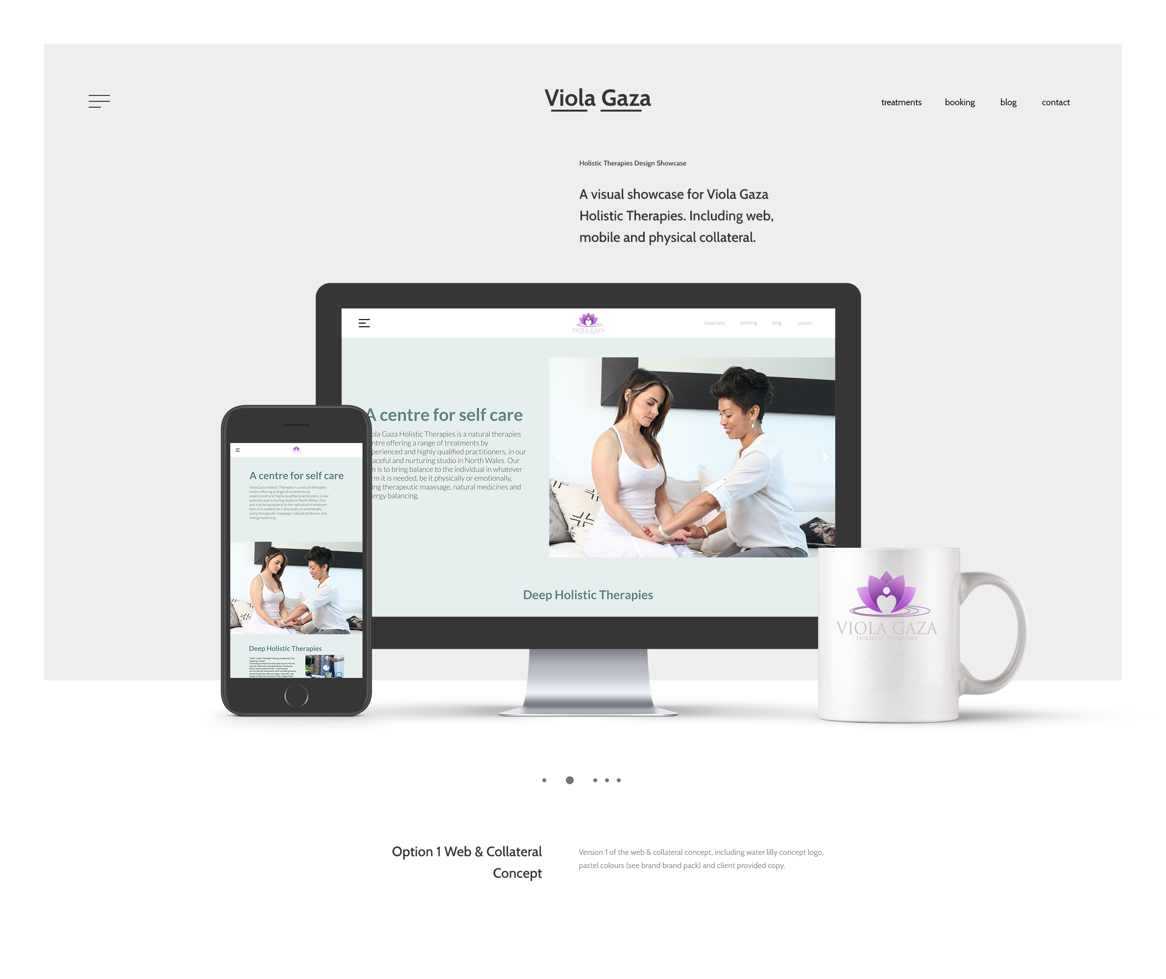Viola Gaza Option 1 website and collateral examples for client approvals