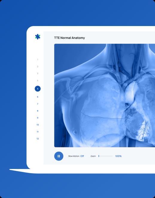 Teaching Medicine - healthcare app