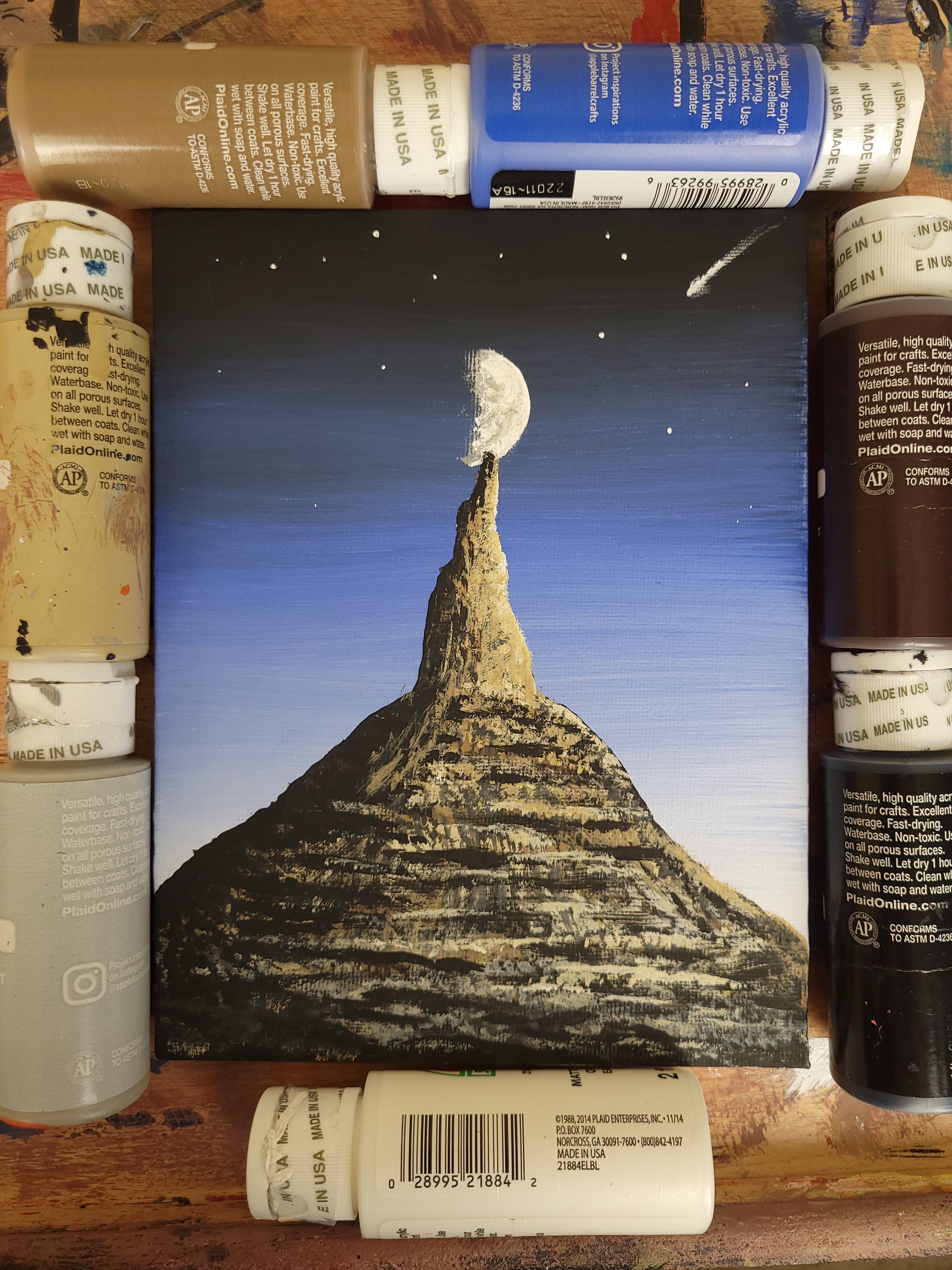 Acrylic paintings of various subjects