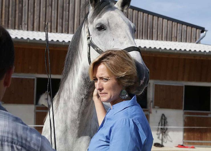 un cheval et une participante d'un team building insolite chez RDV en Terre Animale