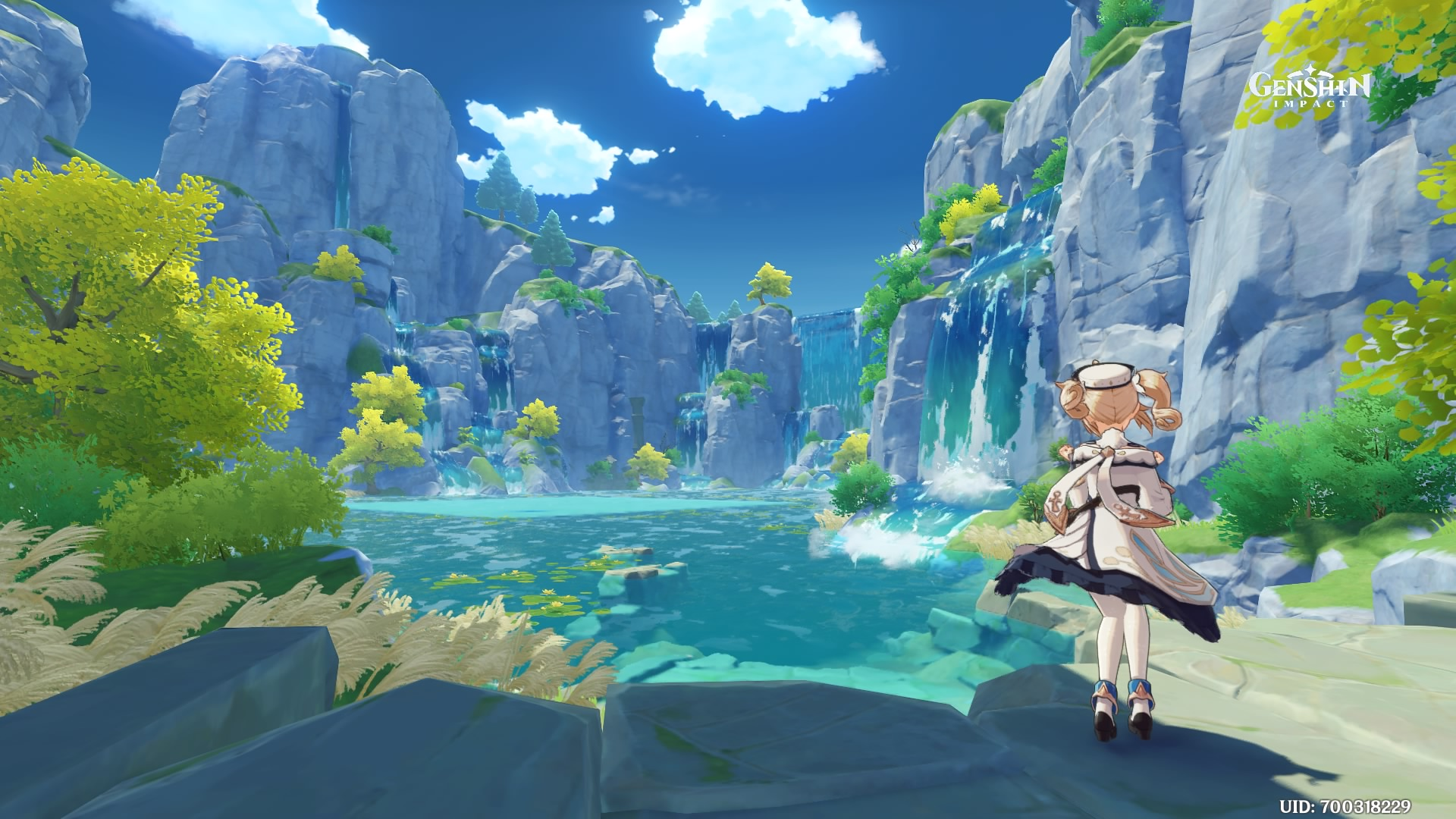 A screenshot of Barbara in front of a waterfall.