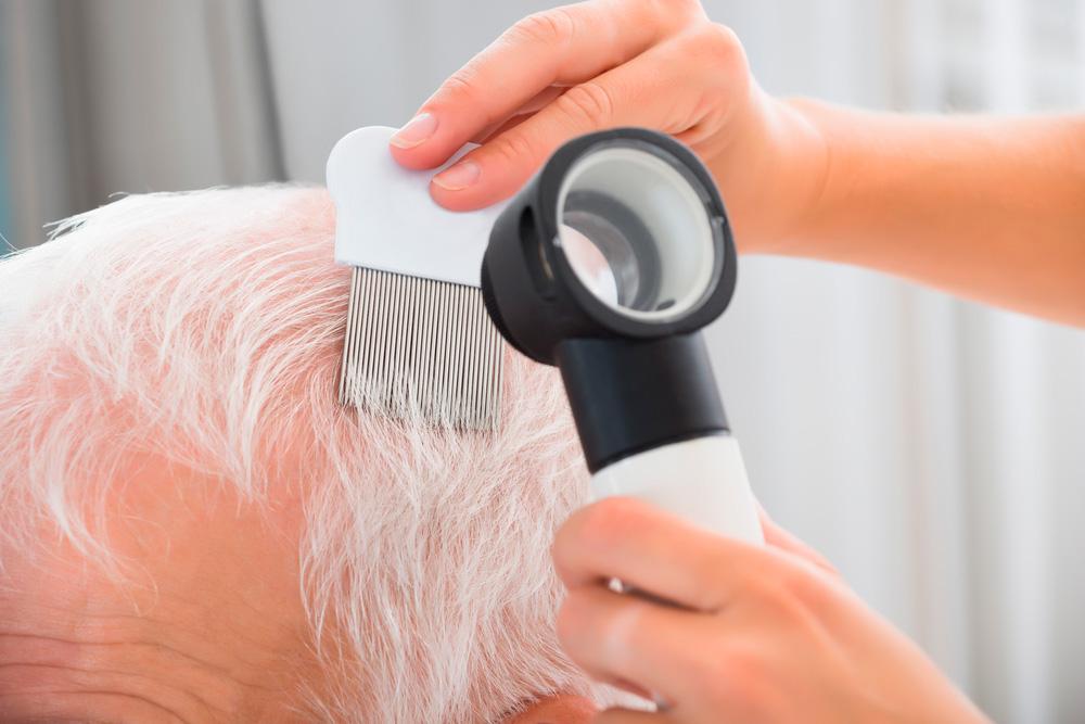 Senior and nursing homes lice check