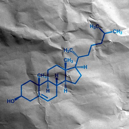 Debunking The Cholesterol Myth