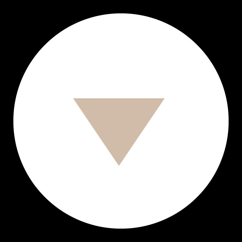 Drop down image icon