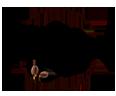 balance-the-grind logo