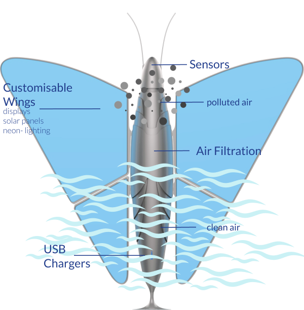 neomorpho butterfly clean air
