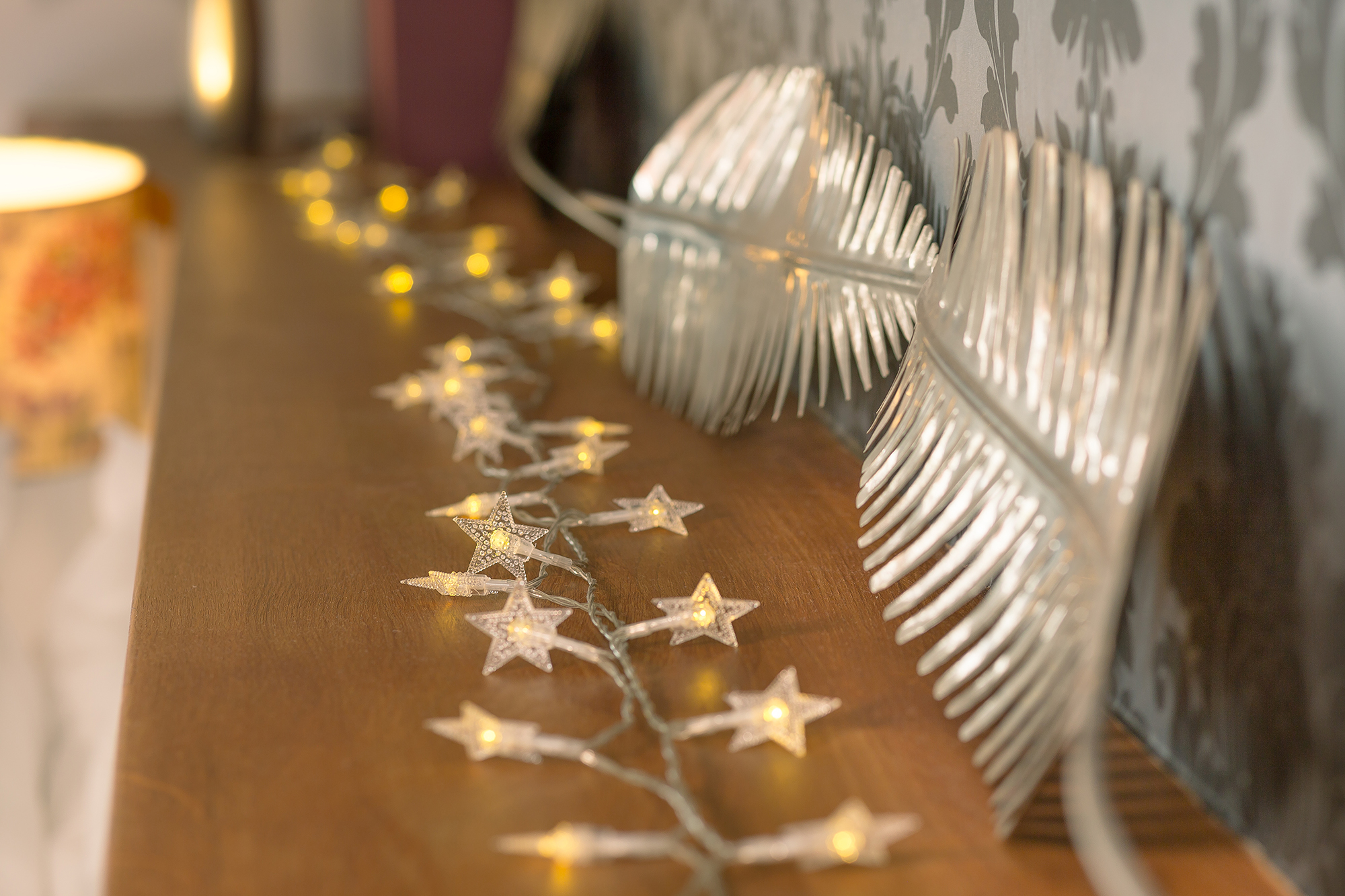 Ornamental lights