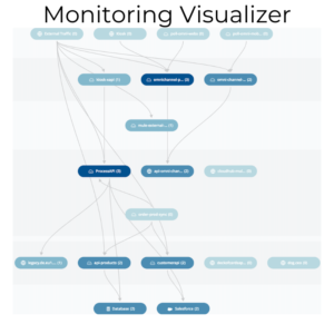Anypoint Monitoring Visualizer