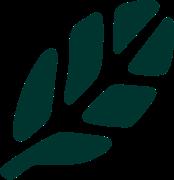 symbole-zack