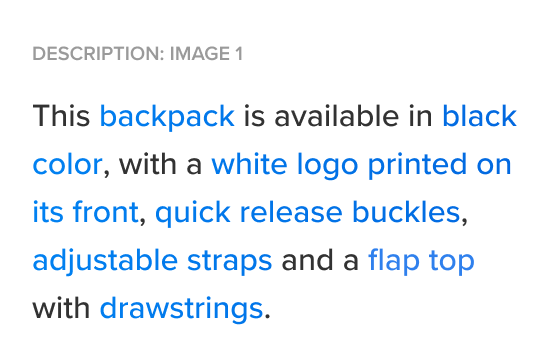 A picture of an auto-generated product description for the Palermo Technico Backpack from Dolce&Gabbana.