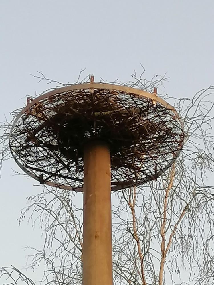 Opravená konstrukce hnízda je na svém místě👍👍. Teď už můžeme vyhlížet jaro a přílet prvních nájemníků 😃