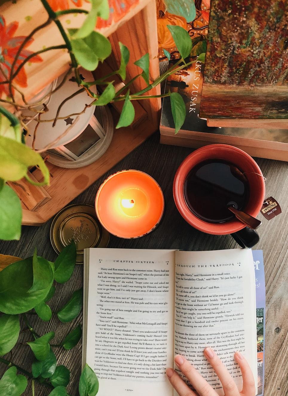Pořídili jsme do knihovny 17 nových knih 📕📗📘😉 Podzim je za dveřmi a ve�ery se krátí, takže nastává �as zalézt pod deku ☕� a pře�íst si něco hezkého.